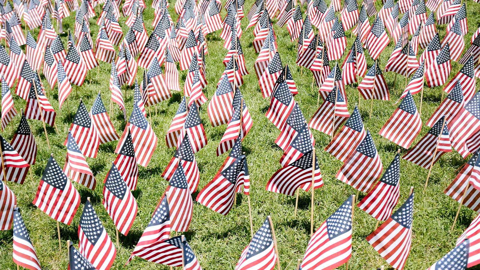 Help Us Flag The Lawn For Veterans Day